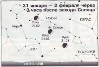 31 января — 2 февраля через 3 часа после захода Солнца