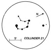 COLLINDER 21