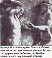 Держащего небосвод Геракл и принесший яблоки Атлас