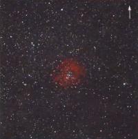 Диффузная туманность Розетка (NGC 2244)