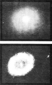 Галактика M94