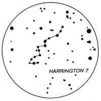 HARRINGTON 7