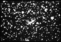 Комета Барнарда