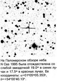N Cas 1995