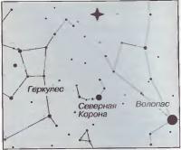 Область неба, где произошел гамма-всплеск