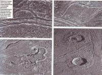 Поверхность Ганимеда несет на себе следы активной вулканической и тектонической деятельности
