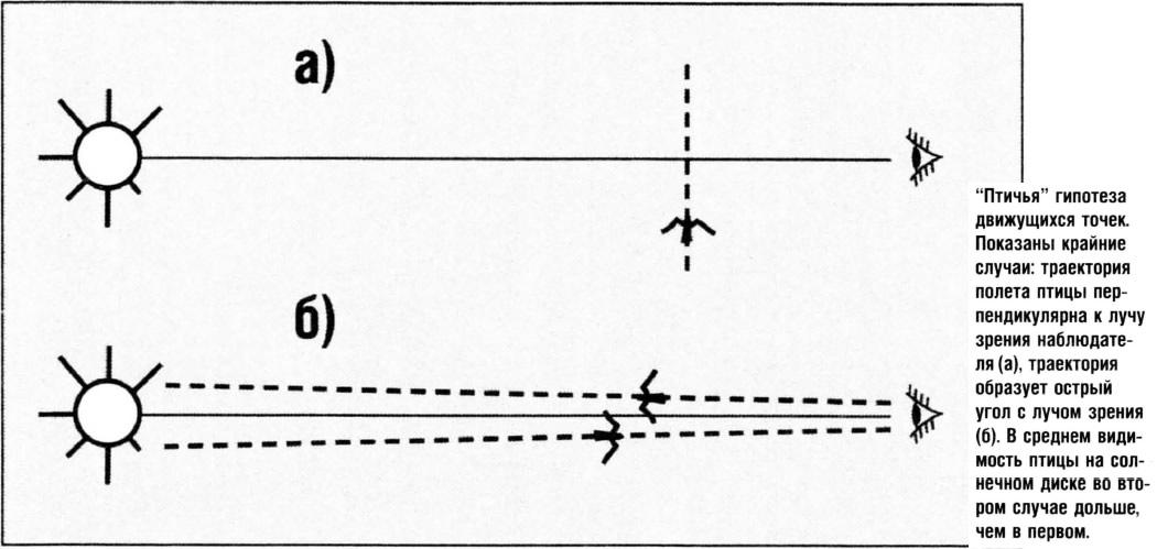 Птичья гипотеза движущихся точек