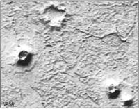 Равнина Марса