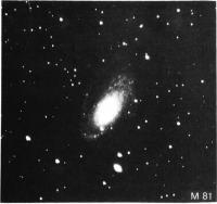 Скопление M81