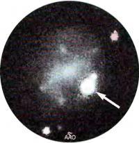 Сверхновая SN I998bw