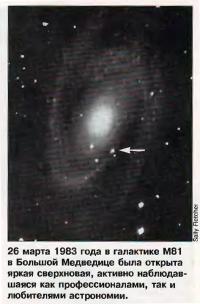 Сверхновая в галактике М81 в Большой Медведице