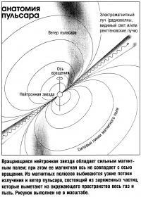 Вращающаяся нейтронная звезда обладает сильным магнитным полем